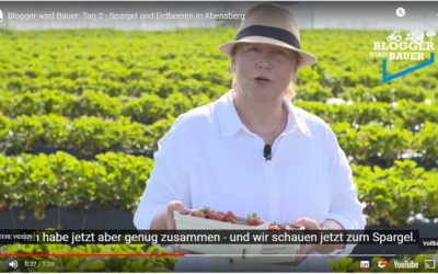 Blogger wird Bauer: Tag 2 – Spargel und Erdbeeren in Abensberg